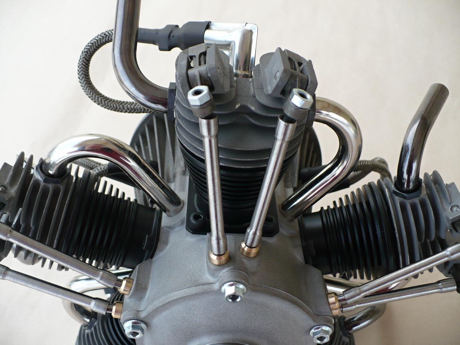 Bombus H80